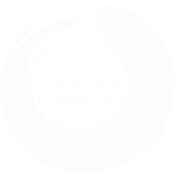 panache consulting - minority owned business
